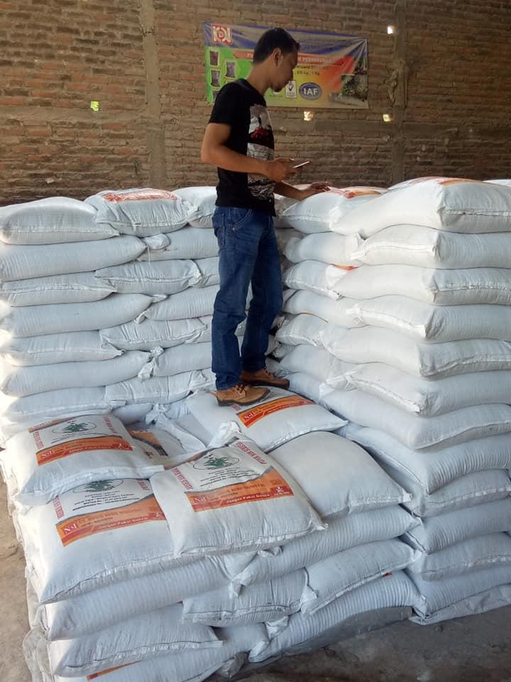 Mengecek stok phospat alam bintang padi dan phospat alam binus sebelum barang di muat ke NTT Kupang, Makasar dan Kalimantan