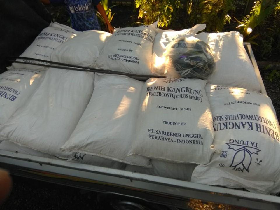 Meluncur benih kangkung curah ke Madura sebanyak 2,5 ton