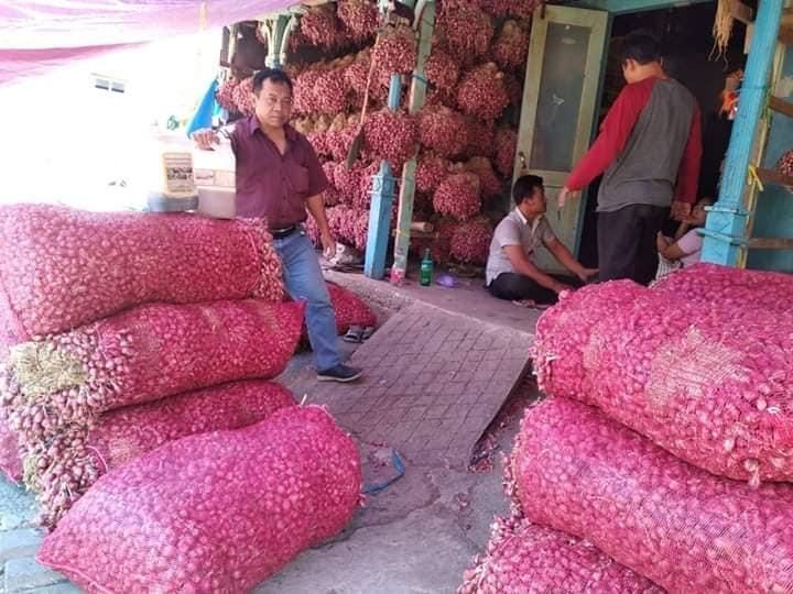 Pembelanjaan bibit bawang merah pengerjaan di Kalimantan Utara