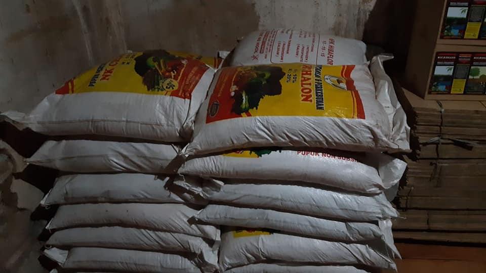Pengiriman pupuk NK Chalon dan hibaflor ke Banyuwangi untuk tanaman buah naga, jeruk dan padi