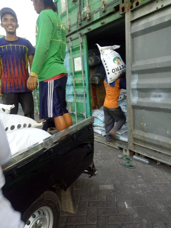 Bongkar pupuk SP36 non subsidi di Pelabuhan Perak Surabaya