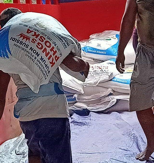 Muat pupuk kings phoska tujuan kios pertanian kota Ngawi sebanyak 10ton