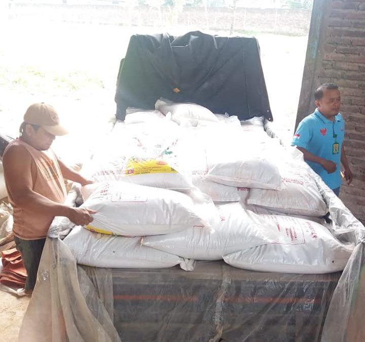 Pengiriman pupuk hibaflor dan interflor ke petani Pasuruan