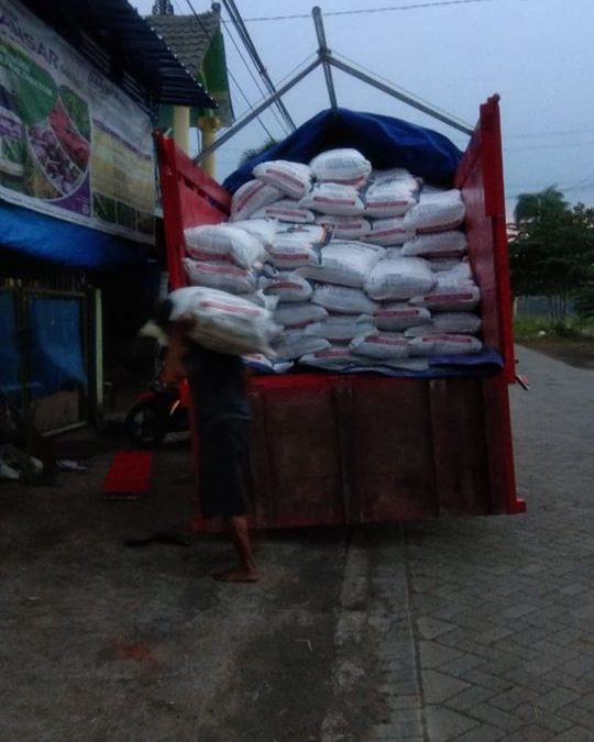Proses bongkar pupuk urea non subsidi sebanyak 10ton di kios pertanian Pasuruan